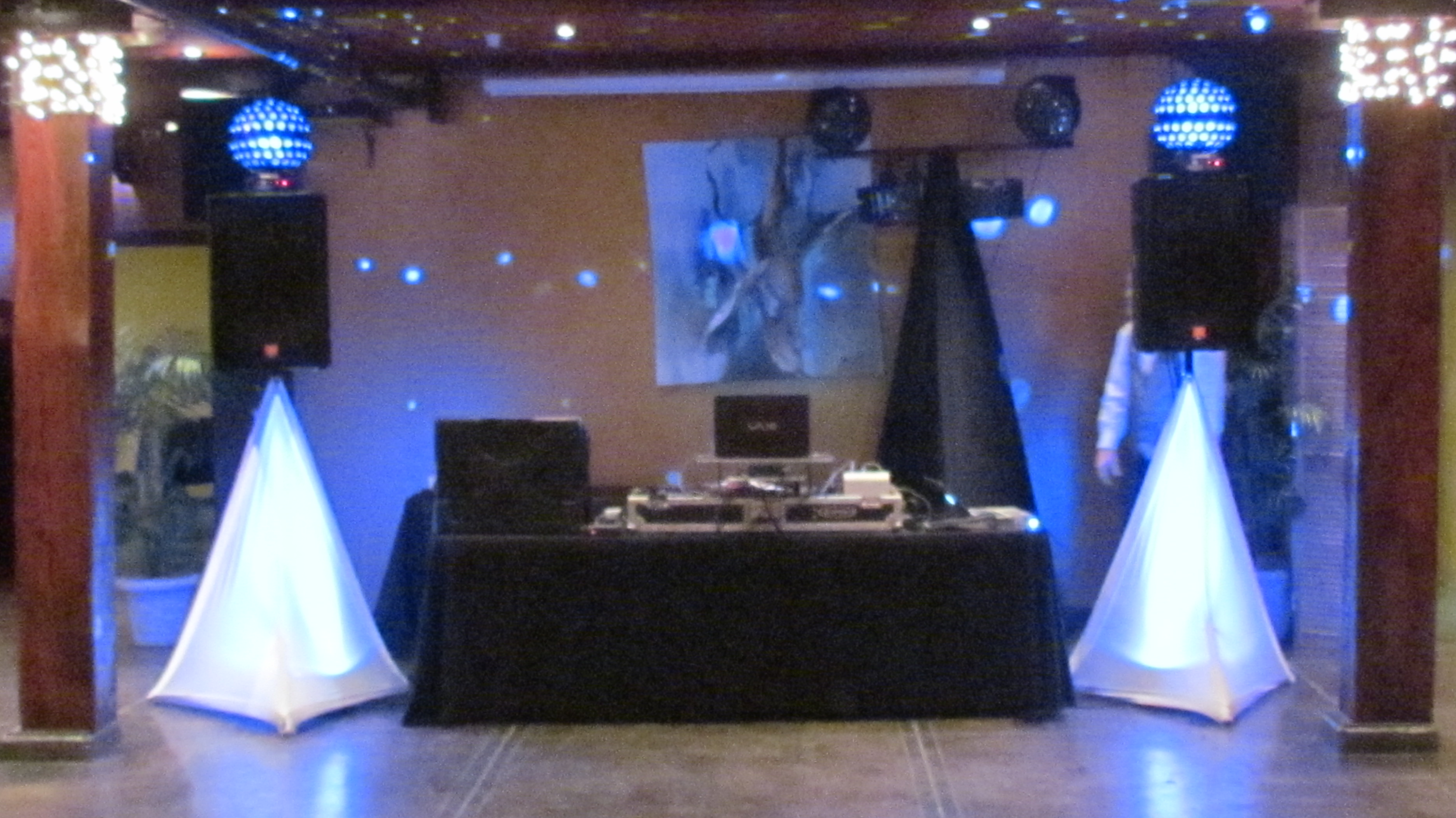 Indianapolis Wedding DJ Wedding Reception DJ Music Lifeline